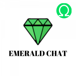 Omegle Alternative Emerald Chat